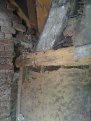 The common furniture beetle (Anobium punctatum) has attacked the sapwood of this timber roof truss, note the reduction in the diameter of the tie beam from the right to the left, as building was poorly maintained this allowed rainwater to come into contact with the timber roof truss, this provided an ideal environment for the beetle and larvae to flourish.